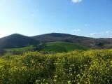 Vista della valle dal casale
